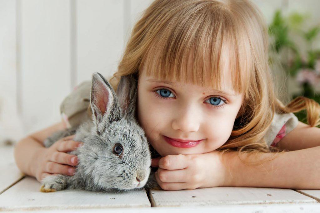 conejos-como-mascota-preferida
