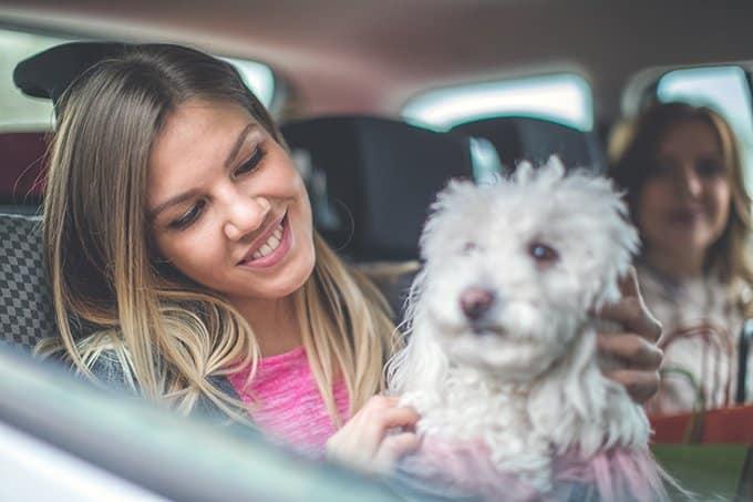 dueña con su perro en taxi para mascotas